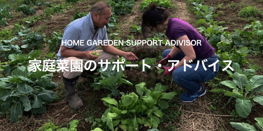 家庭菜園出張アドバイス・サポート