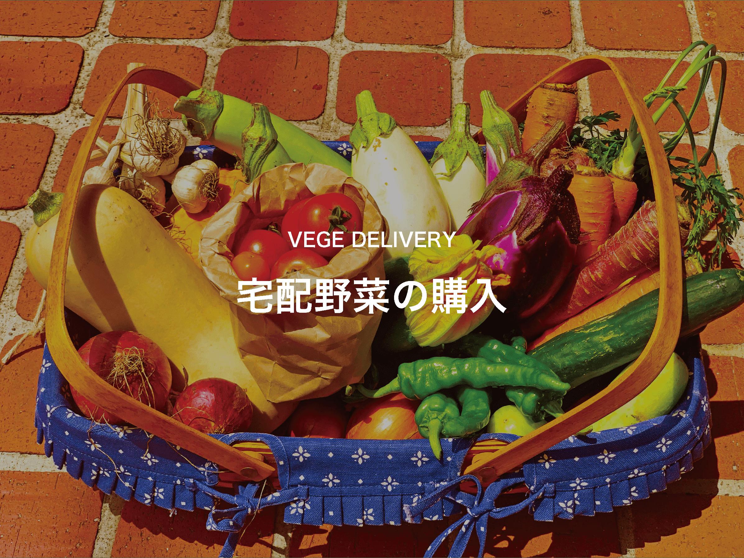 宅配野菜の購入