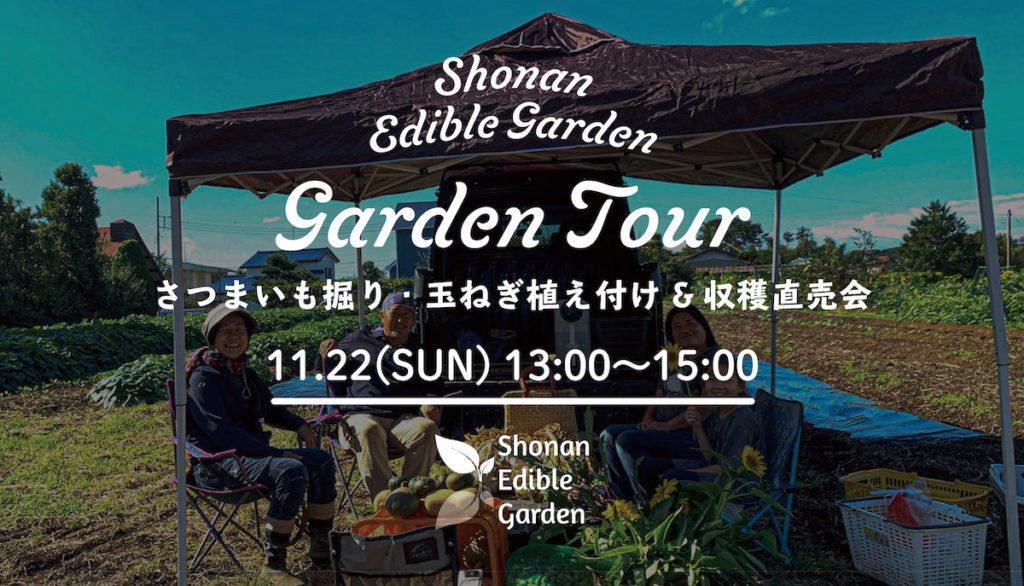 Garden Tour さつまいも堀り、玉ねぎ植え付け